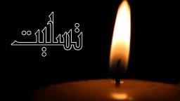 داور قدیمی ایران درگذشت